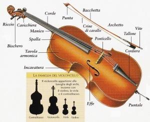 violino-parti
