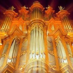 1545309521752_organ